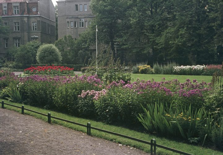 Rehbinderintie villas and Eira Park in the 1960s, Eira Villa District