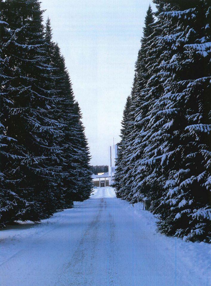 View along the spruce-lined avenue towards the chapel, Lamminpää Funerary Chapel